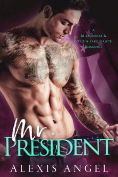 Mr. President - a billionaire erotic romance book by Alexis Angel to read online