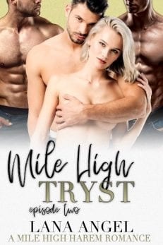 mile high tryst - billionaire romance Alexis Angel