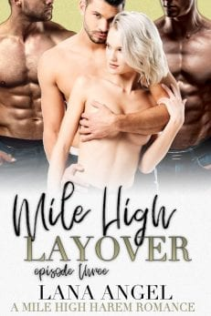 Mile High Layover - free romance novels