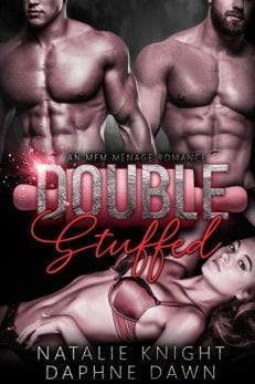 double stuffed - best contemporary romance novels