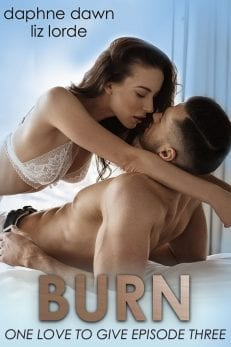 burn - billionaire romance novel series